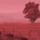 Tree by Nigel Silcock