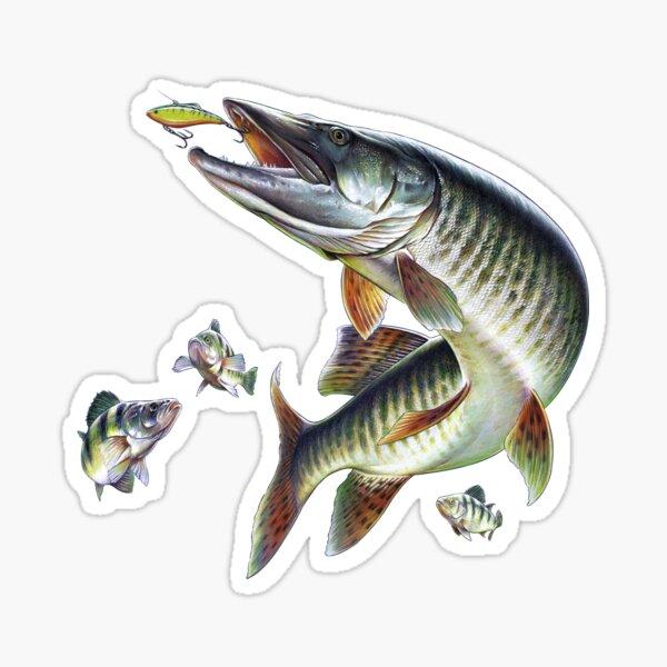 Muskie Fishing Sticker