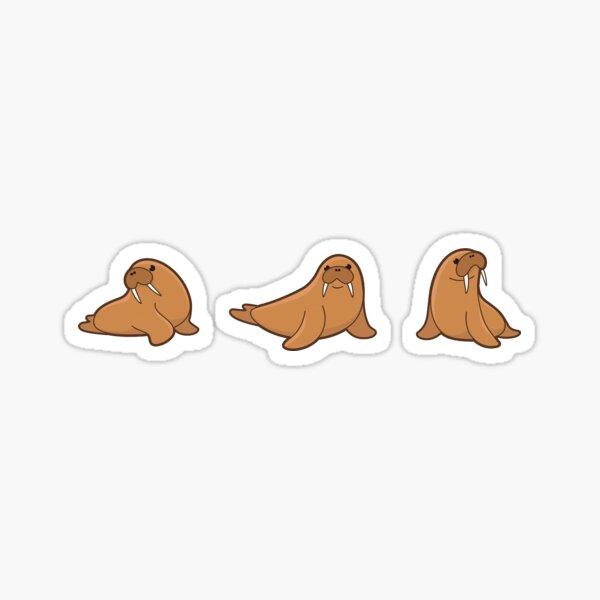 Walrus sticker Sticker
