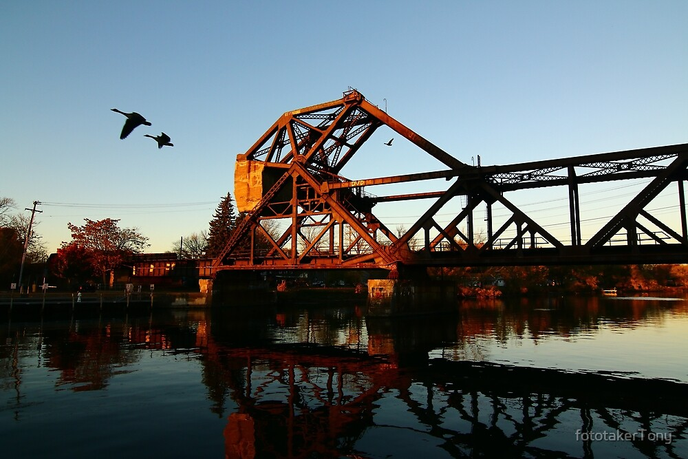 Flight of the Canada Geese by fototakerTony