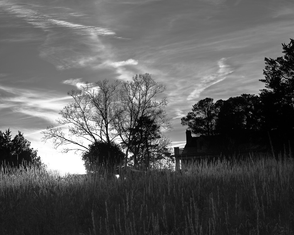 Southern House in the Setting Sun by Andy Whitfield