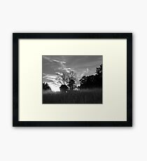 Southern House in the Setting Sun Framed Print