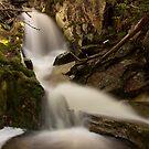 Upper Crater Falls  by Patrick Reid