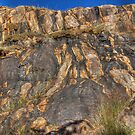 The Darling Scarp at Lesmurdie Falls by Eve Parry