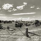 Sugarloaf Hills by Jason Ruth