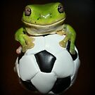 Anyone for soccer? by Cathie Trimble