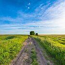Prairie Road by IanMcGregor