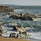 Rocky Cape by Judi Rustage