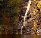 """""""Waterfall Gully"""" by Heather Thorning"""