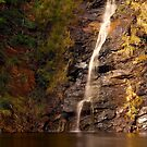 """Waterfall Gully"" by Heather Thorning"