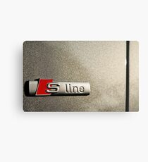 S-Line; Representing Power and Beauty Metal Print