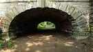 Tunnel by Jessica Liatys