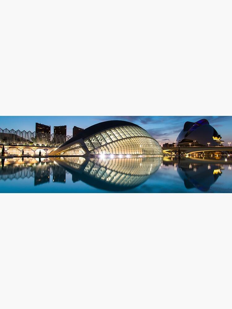 Panorama nocturno de la Ciudad de las Artes y las Ciencias, Valencia, España de RedMann