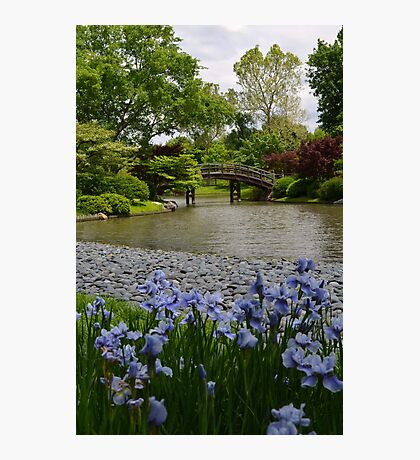 Spring in a Japanese Garden Photographic Print