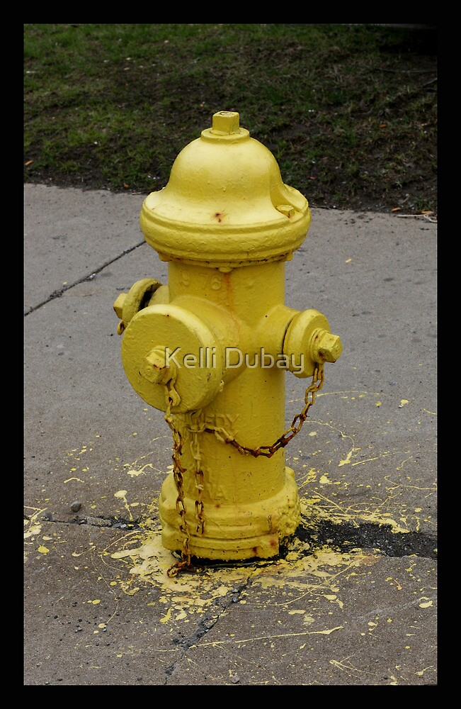 Yellow Dog by Kelli Dubay