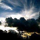 "across the sky by Alexa ""Lexi"" Platts"