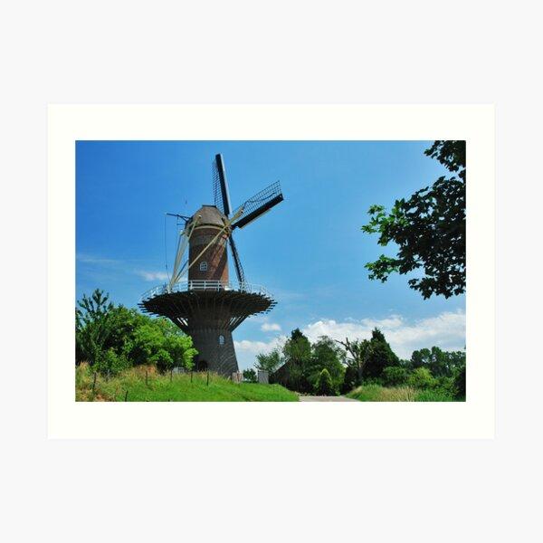 De Hoop, Wolphaartsdijk Art Print