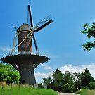 De Hoop, Wolphaartsdijk by Adri  Padmos