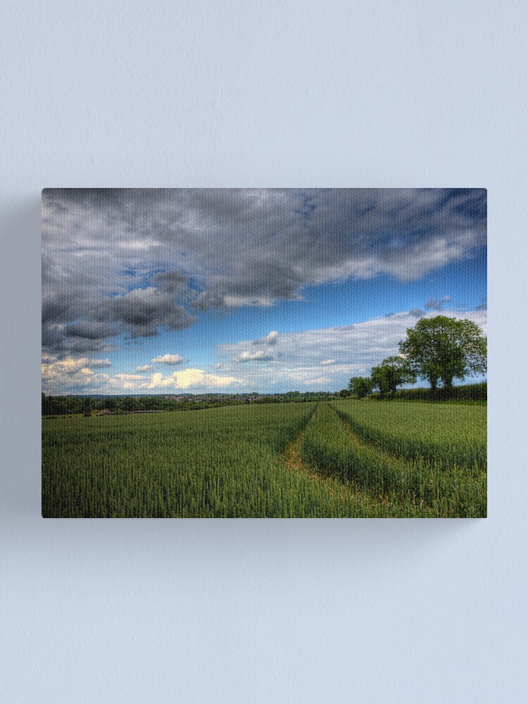 Alternate view of Barley in Winchester Canvas Print