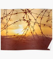 Bloody sunset at the Israel-Egypt border Poster