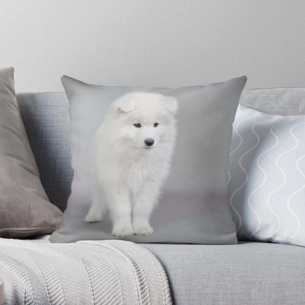 Samoyed puppy Throw Pillow