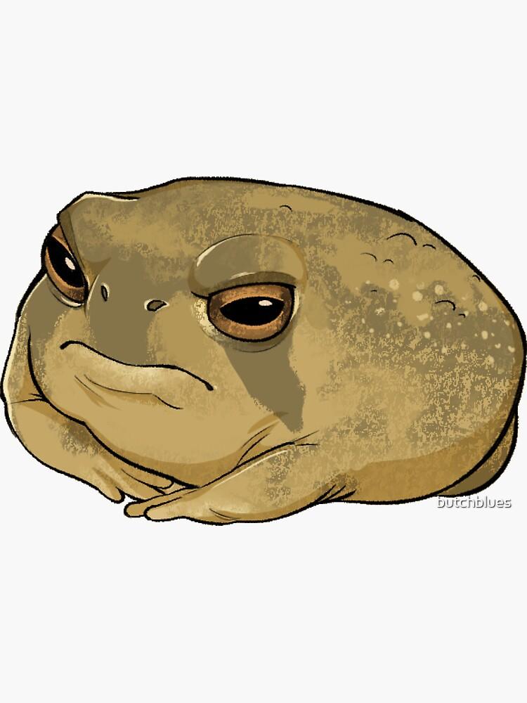 Angry Rain Frog by butchblues