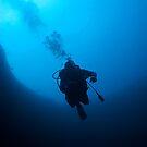 Diver descending into Blue Hole, Nassau, Bahamas by Shane Pinder
