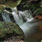 Water Movement - Tillman Ravine by Stephen Vecchiotti