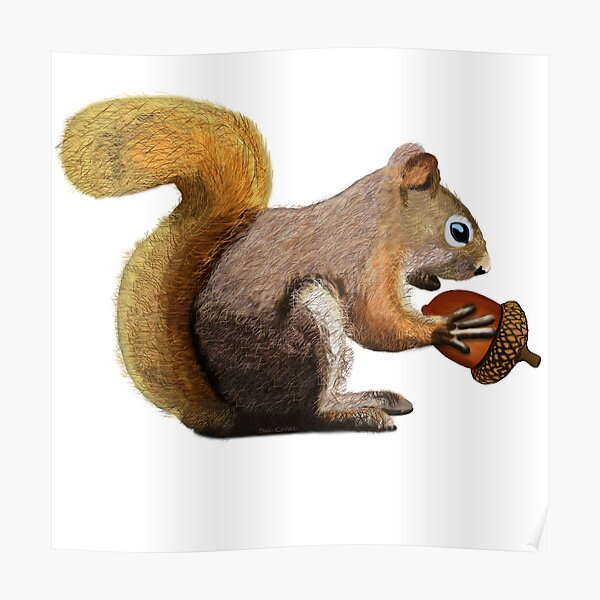 Squirrel with Acorn Poster