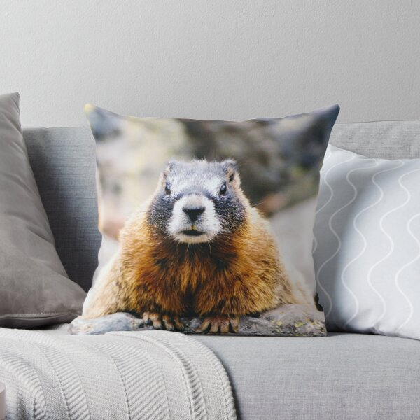 Fuzzy Chonk Throw Pillow