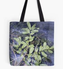 Mystic Trees! Tote Bag