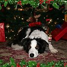 Holidays by DebbieCHayes