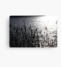 Lady Bird Lake Canvas Print