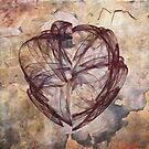 Wounded Heart by KathleenRinker