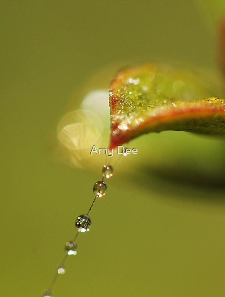 Leafy Tears by Amy Dee
