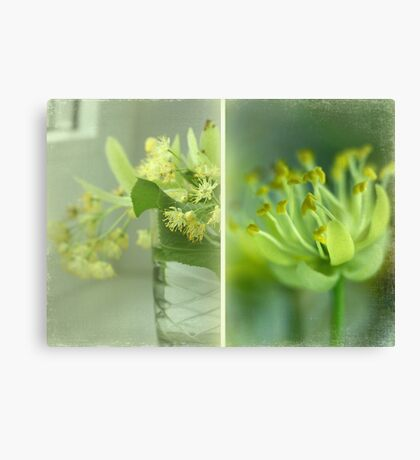 Spring in a vase Canvas Print