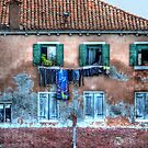 Venice washing #10 by Luke Griffin
