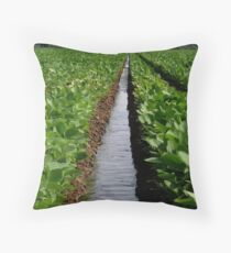 Water in a Row Throw Pillow
