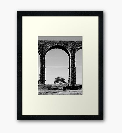 Lone Tree at the Viaduct Framed Print