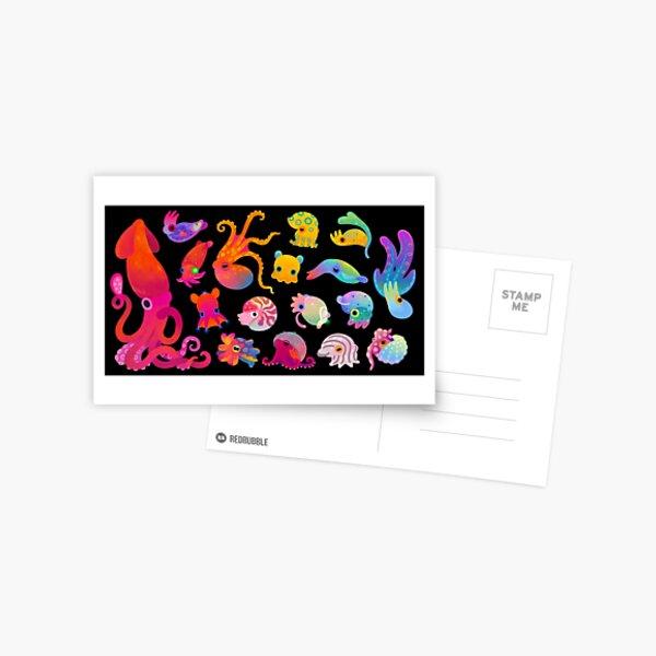 Cephalopod Postcard