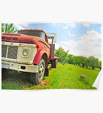 The truck in the vineyard Poster