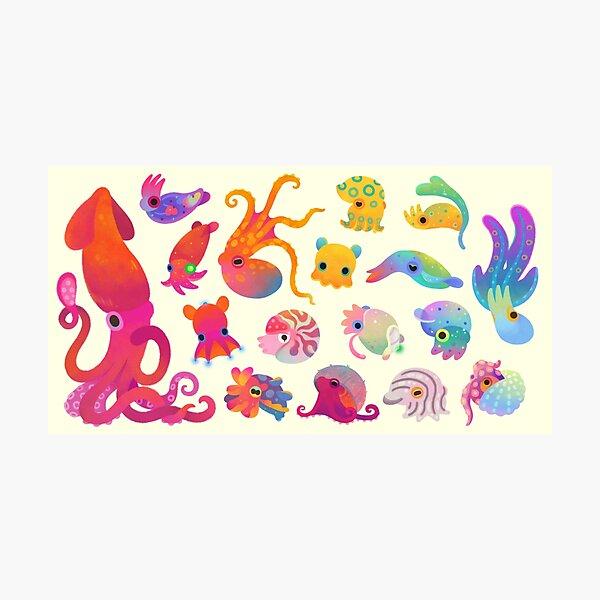 Cephalopod - pastel Photographic Print