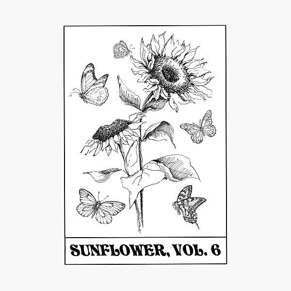 sunflower vol 6 Photographic Print