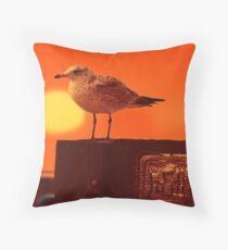 Sunburned Seagull Throw Pillow