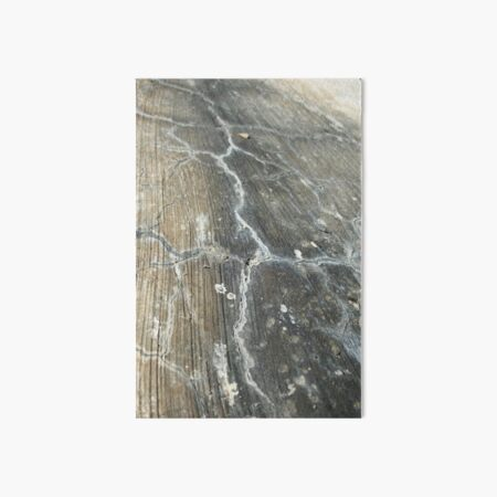 Cracked Cement, Abstract Photography by Courtney Hatcher Art Board Print