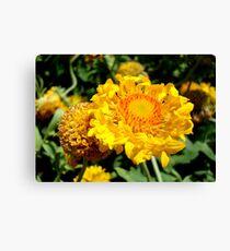 Yellow Flowers    ^ Canvas Print