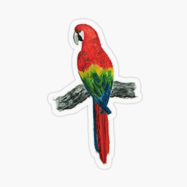 Tropical Parrot! Transparent Sticker
