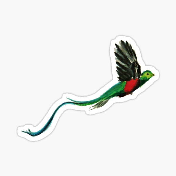 Quetzal Watercolor  Sticker
