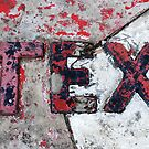 Tex by Clare McClelland