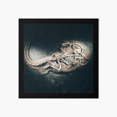 Coelophysis Art Board Print